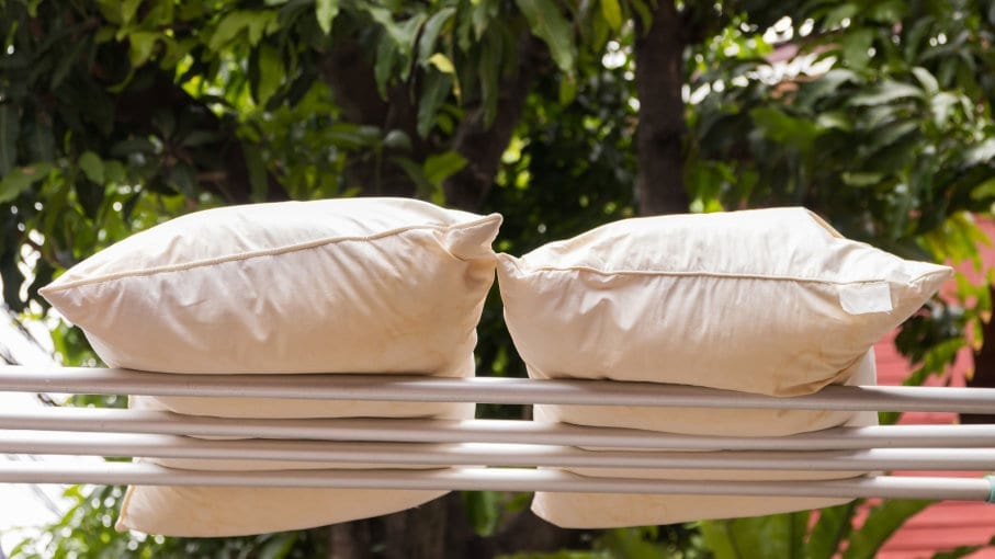 Drying Pillows
