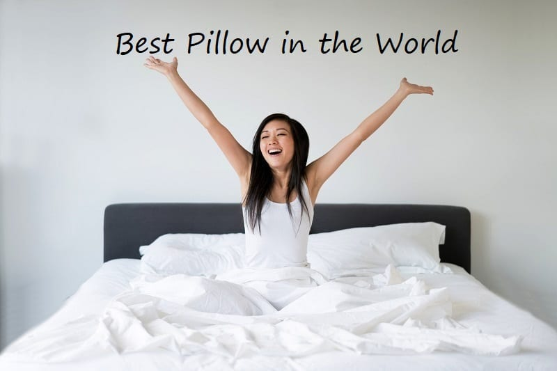 Best Pillow in the world