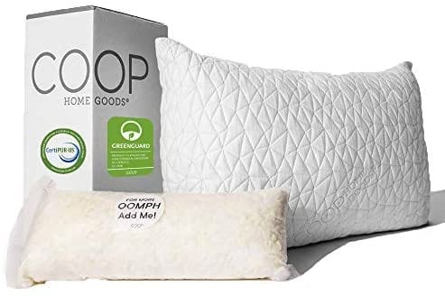 best foam pillow in the world