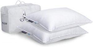 Best Hotel Pillow 2 pillow set