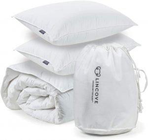 Best Hotel Pillow set